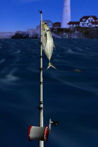 Il mio primo pesce